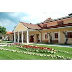 Aktivní týden pro seniory v Piešťanech - hotel Pro Patria ** (7 nocí, polopenze, lék. vyšetření, až 12 procedur)