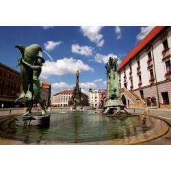 Olomouc – nejen město tvarůžků (3N, snídaně, plavba, prohlídky)