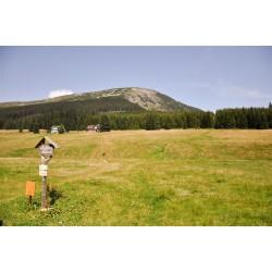 Zlaté chvíle pohody na horách (4 noci, PoloP, 2 procedury, bazén, whirlpool, fitness, sauna, káva/zákusek)